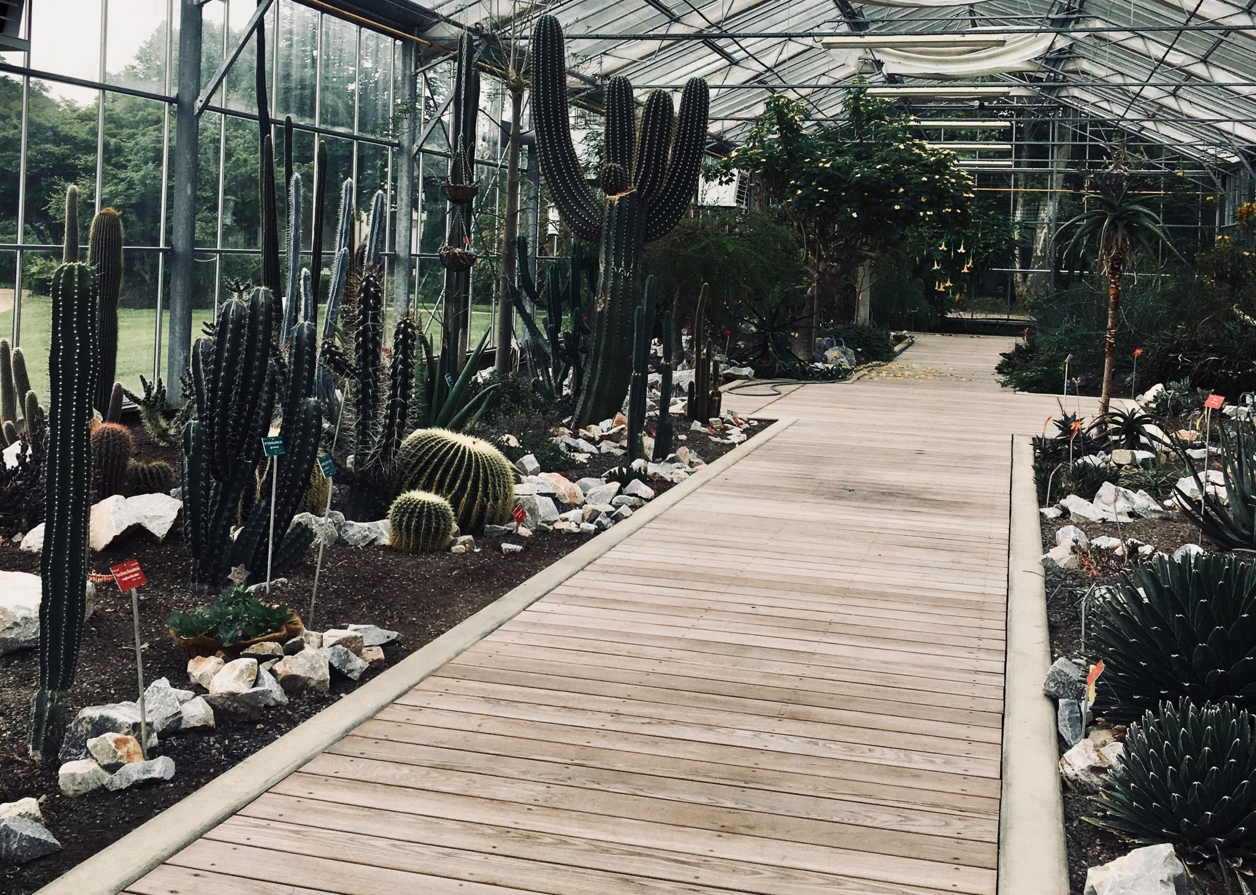 BUCCOTHERM® visita el Conservatorio Botánico Pierre Fabre